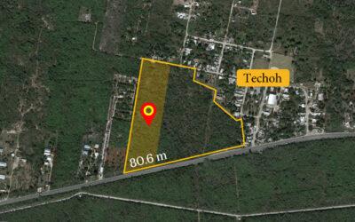 Terreno Mixto Techoh Mérida